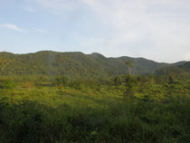 View over Kui Buri NP