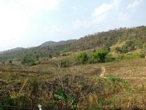 View to Khao Phaeng Ma, Nakhon Ratchasima province  (Foto: Roland Maennel)