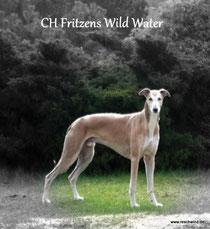 Fritzens Wild Water