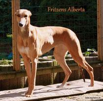 Fritzens Alberta