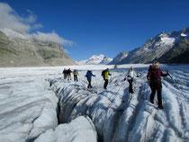 Der grösste Gletscher der Alpen