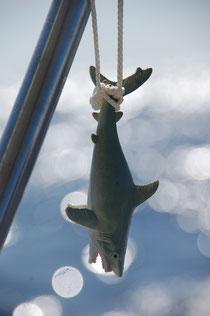 Und wir hoffen auf einen richtig leckeren Fisch an der Leine.......