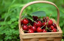 Ciliegie, proprietà antiossidanti