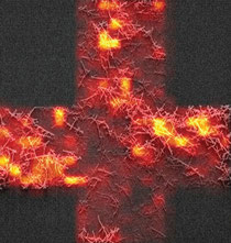 Raman hot spots (Credit: University of Montreal/Nature Photonics)