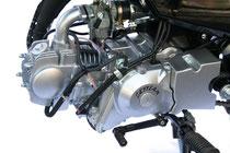 Skyteam T-Rex 125 Motor Suzuki RV replica