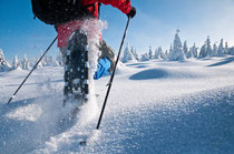 Schneeschuhwandern erfreut sich zunehmender Beliebtheit. Es ist die wahrscheinlich älteste Wintersportart, die Körper und Seele gut tut. Foto:El Gaucho/Fotolia.com