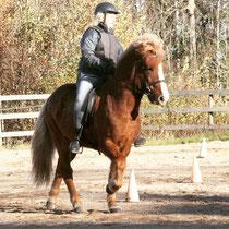 Therese rider kurs på Meya