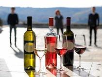 Weingut Fontanin, im italienischen Barolo-Gebiet