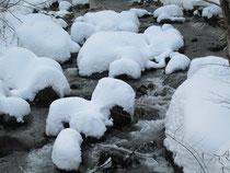「川の湯」前の川も雪景色