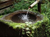 循環する『水』