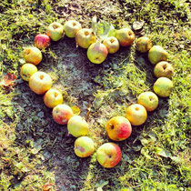 Äpfel mit Liebe