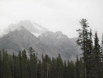 Wir kommen in den Banff N.P.