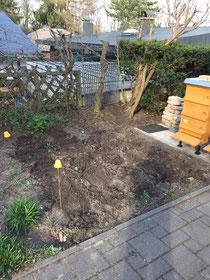 das frisch bepflanzte Kartoffelfeld