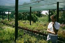 Botanischer Garten in Südafrika