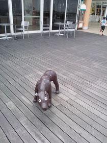 なぜか海ほたるの犬