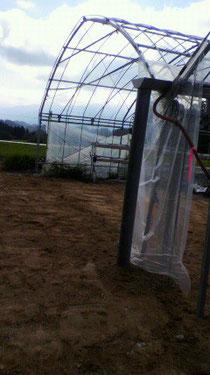 なかはた農園 イチゴ狩り ハウス復活
