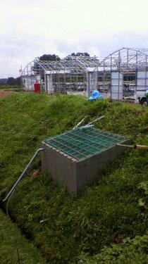 なかはた農園 イチゴ狩り 準備 安全対策