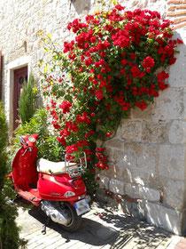 scooter rouge sous le soleil d'été - photo Sylvie Boulet