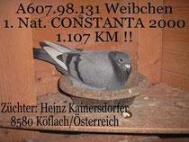 1. Nat. Sieger Constanta 2000