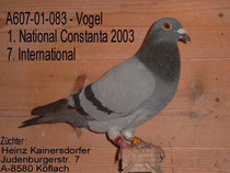 1. Nat. Sieger Constanta 2003