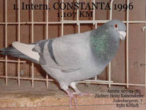 Intern. Sieger Constanta 1996