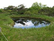 鳥原小屋近くに点在する池塘