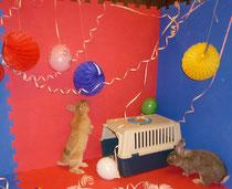 Faschingsfeier mit den Zwergkaninchen Bibi & Coco im Jugendheim