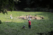 移動動物園・ふれあい動物村 自然体験