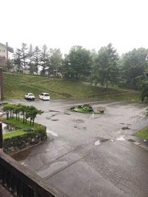 雨、ちょっと残念でした。(´・ω・`)