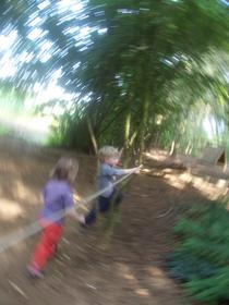 Spielende Waldmäuse in Heidens Wald-Kindergarten.