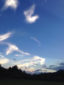 雲のように変幻自在であったなら。