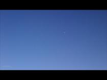 大空とカモメ