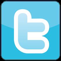 segunda red social mas popular