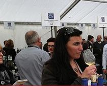 revue des vins de france grands jours de bourgogne