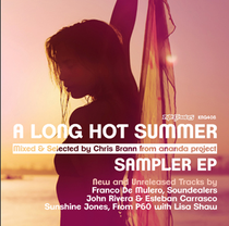 Various - A Long Hot Summer Mixed By Chris Brann From Ananda Project Sampler EP (Nite Grooves)