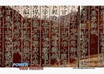 Le POUVOIR du REISHI ROUGE en vidéo en bas de page