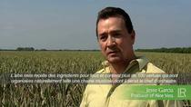 LR au  Mexique, le pays d'origine de l'Aloe vera