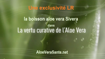 la vertus curative de l'aloe vera avec la boisson LR Sivera : petit film |  Avez vous vu les films détaillants les bienfaits de l'aloe vera sur la santé et la circulation - LR Health and Beauty et Aloe vera sante beauté