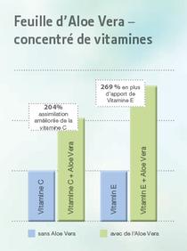 l'Aloe Vera pourrait augmenter la biodisponibilité des vitamines