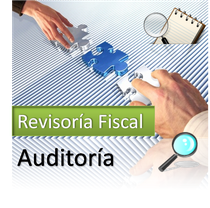 Revisoría Fiscal - Auditoria Integral