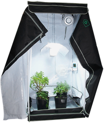 Growbox / Homebox Hanf Cannabis Anbau Indoor Growroom (Anbauschrank)