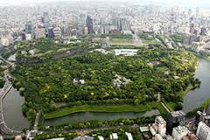 画像:皇居の森