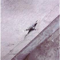 コンクリートの爆裂・欠損の様子