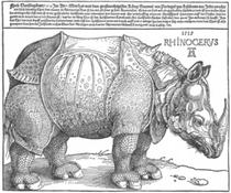 Dürer a interprété son modèle et en a fait une chimère : il dessine sur son dos une petite dent de narval, les plis de la peau comme la carapace d'un crustacé, des pattes d'oiseau