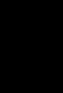 Motiv einer Schamanentrommel der Samen, mythologische Bilder