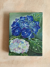 Hydrangea, my favourite flower.