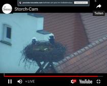 Webcam der Stadt Biberach