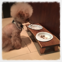 オーダー犬用食器台