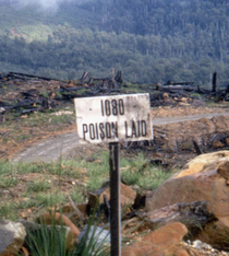 Poison Land via www.m-h-s.org
