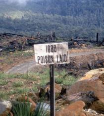 Poison Land via www.m-h-s.org